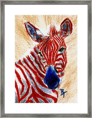 Patriotic Zebra Aceo Framed Print