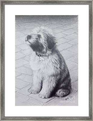 Framed Print featuring the drawing Patsy's Puppy by Mike Ivey