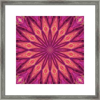 Framed Print featuring the digital art Pattern I by Elizabeth Lock