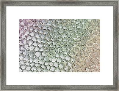 Pattern Or Abstract  Framed Print