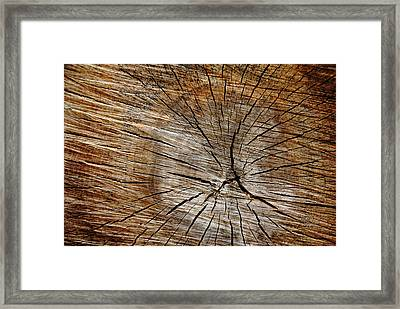 Patterned Wood Framed Print by Debbie Oppermann