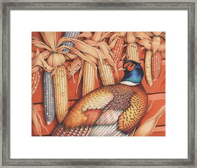 Patterns Of Indian Summer Framed Print by Amy S Turner