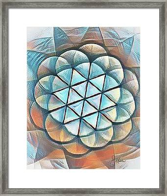 Patterns Of Life Framed Print