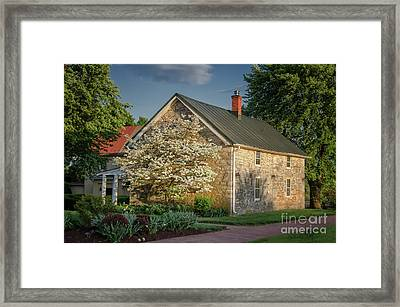 Patterns Of Shadow And Light Framed Print by Lois Bryan