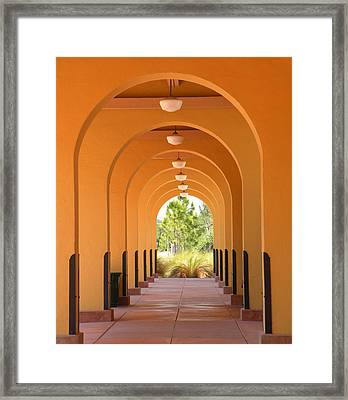 Patterns Framed Print by Rosalie Scanlon
