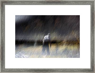 Pause Framed Print by Robert Shahbazi