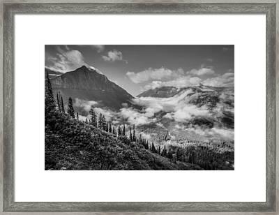 Pause To Wonder Framed Print