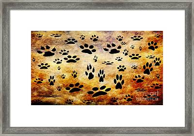 Paw Prints Framed Print by Andee Design