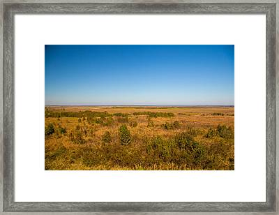 Payne's Prairie Framed Print