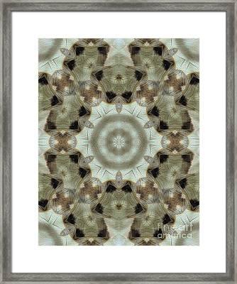 Paz Framed Print