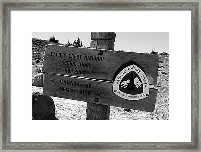 Pct Scenic Trail Framed Print by David Lee Thompson