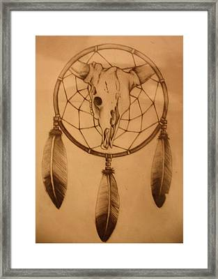 Pd7-10 Framed Print by Shannon Rains