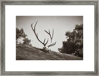 Pea Ridge Sketch 2 Sepia Framed Print