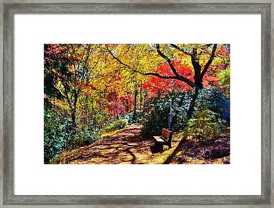 Peace And Tranquility Framed Print