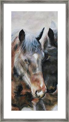Peace Brown Horse Framed Print