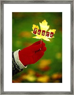 Peace Card Framed Print