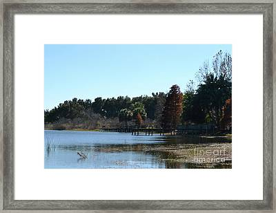 Framed Print featuring the photograph Peace by Carol  Bradley