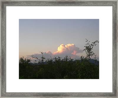Peace Framed Print by Cynthia Ann Swan
