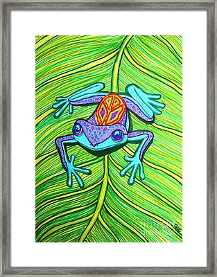 Peace Frog On A Leaf Framed Print by Nick Gustafson