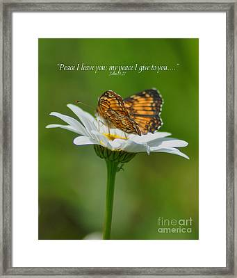 Peace I Leave You Framed Print by Diane E Berry