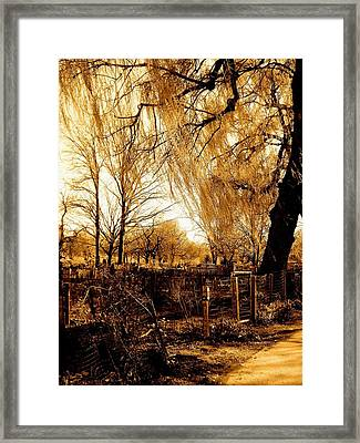 Peace In Boston Framed Print by Sarah Jean Sylvester