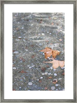 Peace Framed Print by Lauri Novak