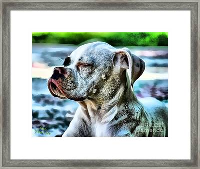 Framed Print featuring the photograph Peace Of Mind by Kathy Tarochione