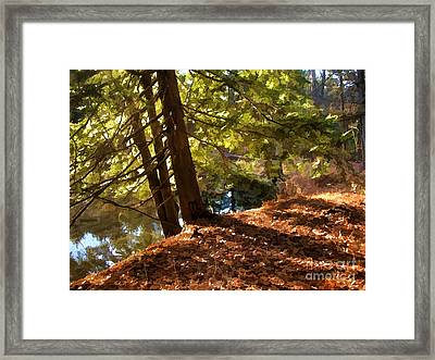 Peace On Earth Framed Print by Betsy Zimmerli