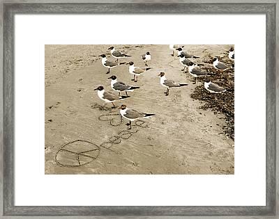 Peace On The Beach Framed Print by Marilyn Hunt