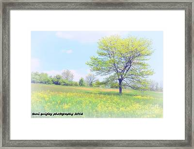 Peace On The Hillside Framed Print