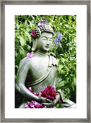 Peace Framed Print by Rebecca Shupp