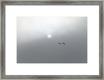 Peace Framed Print by Suzanne Lorenz