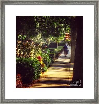 Peaceable Road Framed Print by Miriam Danar