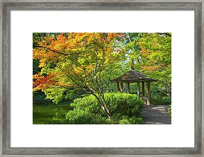 Peaceful Autumn Framed Print by Joan Carroll