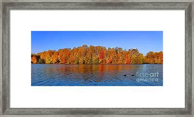 Peaceful Autumn Framed Print by Olivier Le Queinec