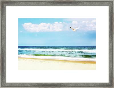 Peaceful Beach With Seagull Soaring Framed Print by Susan Schmitz