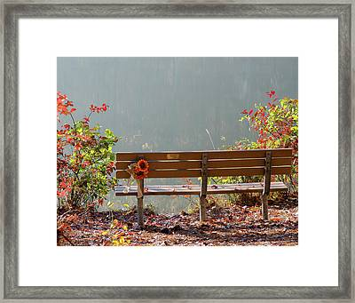 Framed Print featuring the photograph Peaceful Bench by George Randy Bass