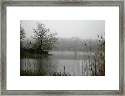 Peaceful Calm Framed Print by Erika Lesnjak-Wenzel