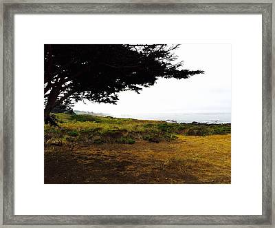 Peaceful Coast Framed Print