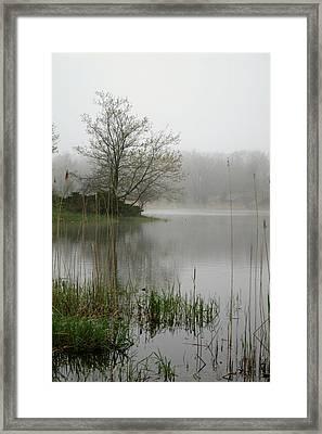 Peaceful Framed Print by Erika Lesnjak-Wenzel