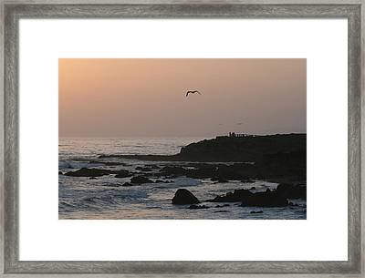 Peaceful Evening Framed Print by Deborah Molitoris