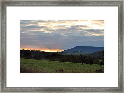 Peaceful Evening Framed Print by Jan Amiss Photography