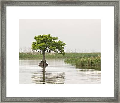 Framed Print featuring the photograph Peaceful Feeling by Julie Andel