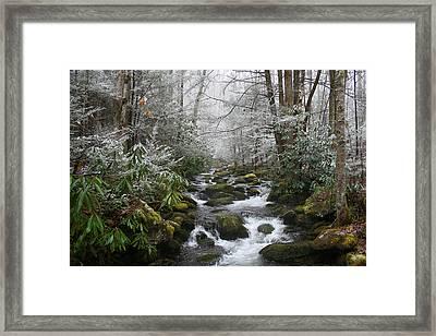 Peaceful Flow Framed Print by Andrei Shliakhau