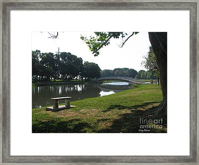 Framed Print featuring the photograph Peaceful by Greg Patzer