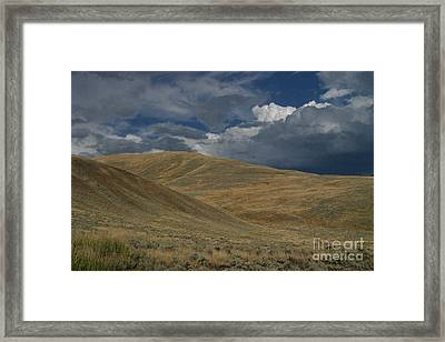 Peaceful Intensity Framed Print by Katie LaSalle-Lowery
