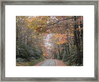 Framed Print featuring the photograph Peaceful Journey Home by Diannah Lynch