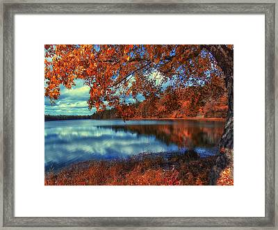 Peaceful Lake View Framed Print by Bill Wranich
