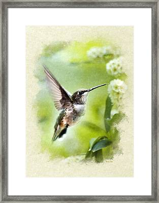 Peaceful Love Hummingbird Blank Note Card Framed Print