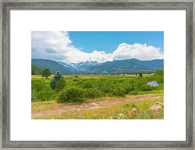 Peaceful Meadow Framed Print